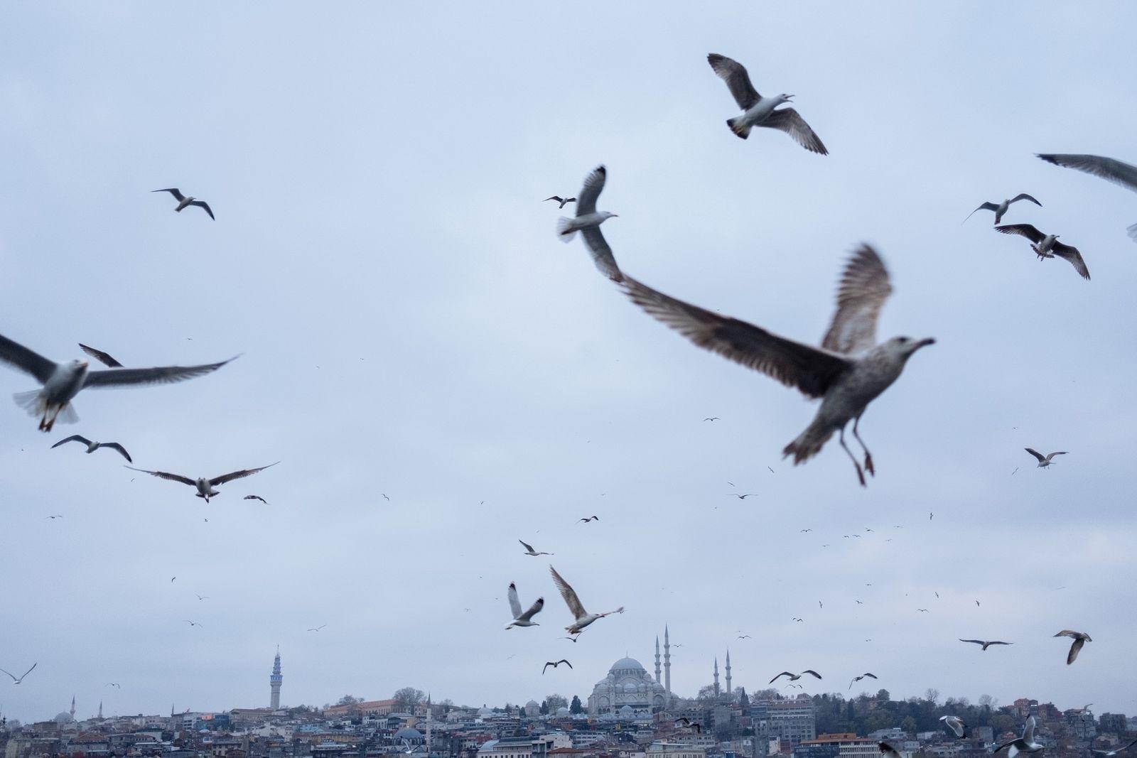 «Fantasmagórica y melancólica»: la cuarentena ha silenciado la bulliciosa Estambul
