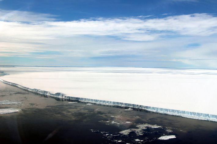 Barrera de hielo Larsen C