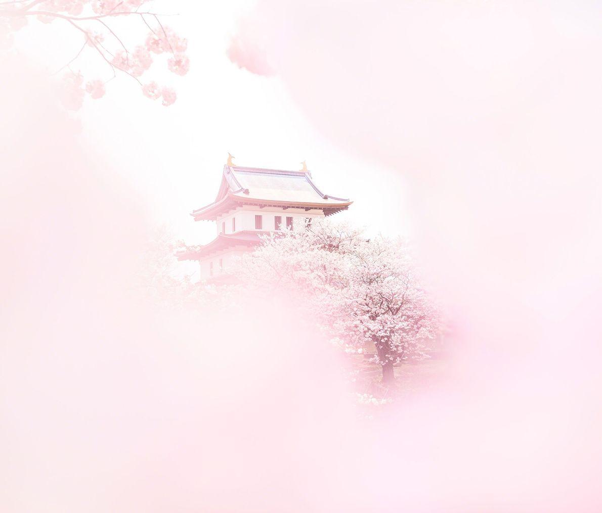 Castillo de Matsumae