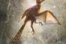 Ambopteryx longibrachium