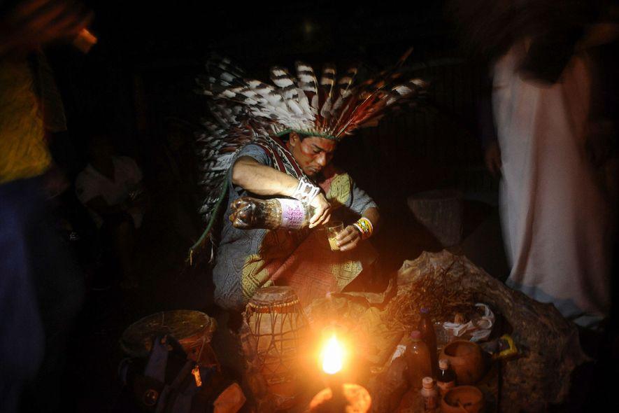 Un miembro de la tribu huni kui de Brasil prepara ayahuasca para usarla en un ritual ...