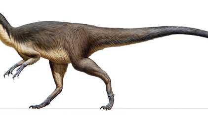 Hallan por primera vez plumas de dinosaurio fosilizadas cerca del Polo Sur