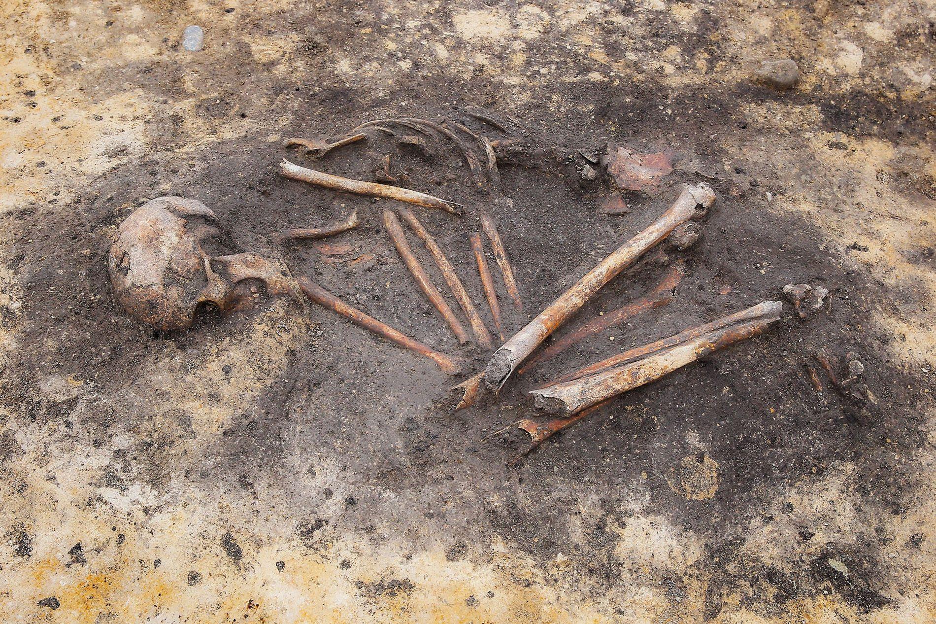 Restos óseos revelan las complejidades sociales «invisibles» de los antiguos hogares europeos
