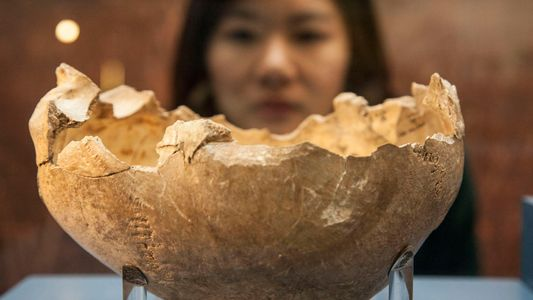 Un estudio sobre canibalismo revela que los humanos no somos tan nutritivos