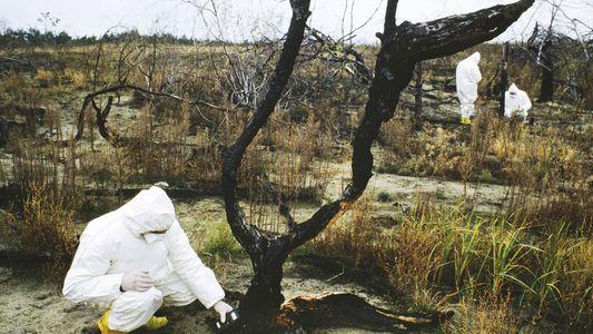 El desastre de Chernóbil: ¿qué ocurrió y cuáles fueron sus consecuencias a largo plazo?