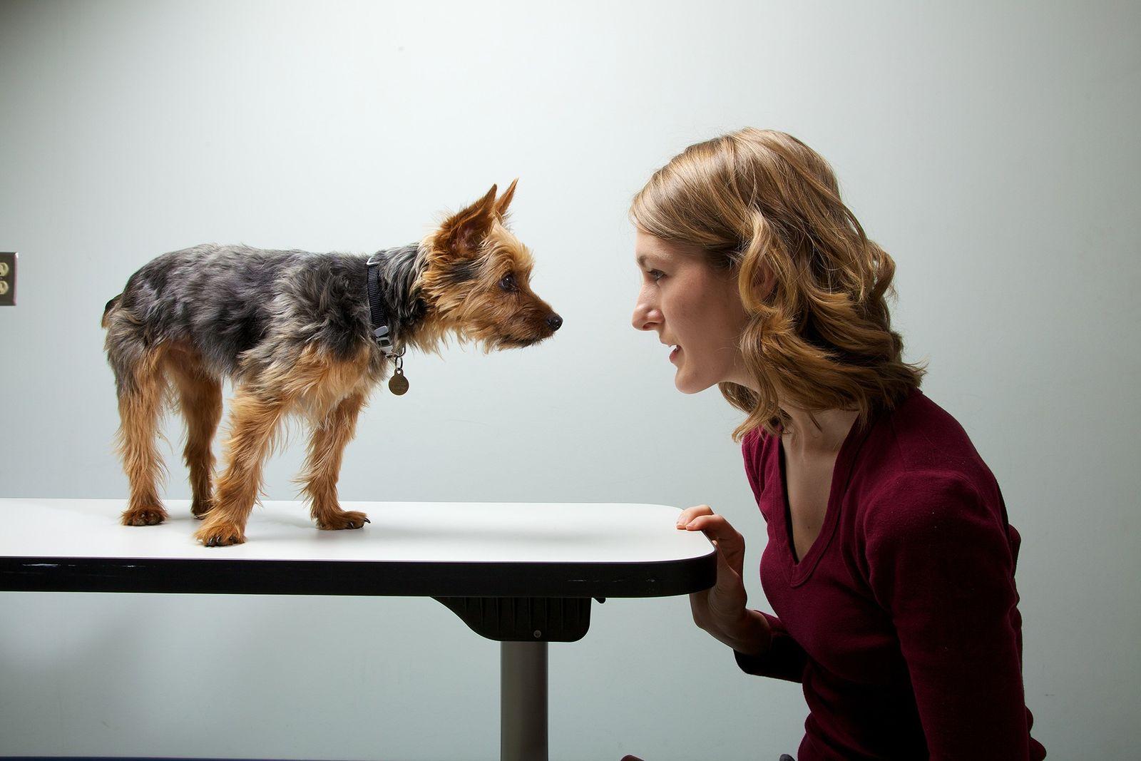 Perro y su dueña