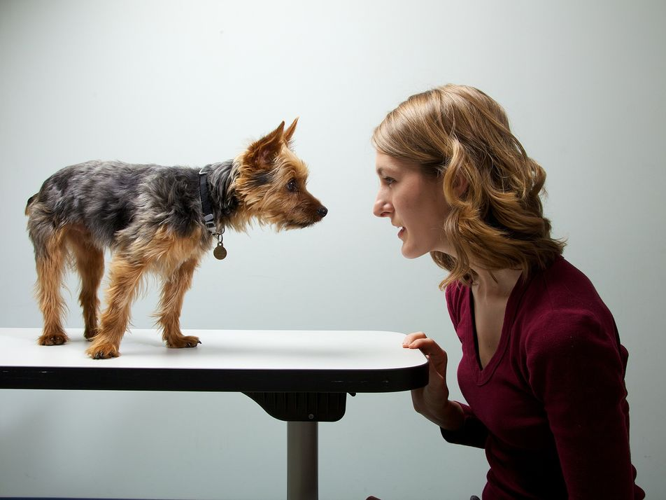 ¿Afecta la personalidad de los dueños a la personalidad de sus mascotas?