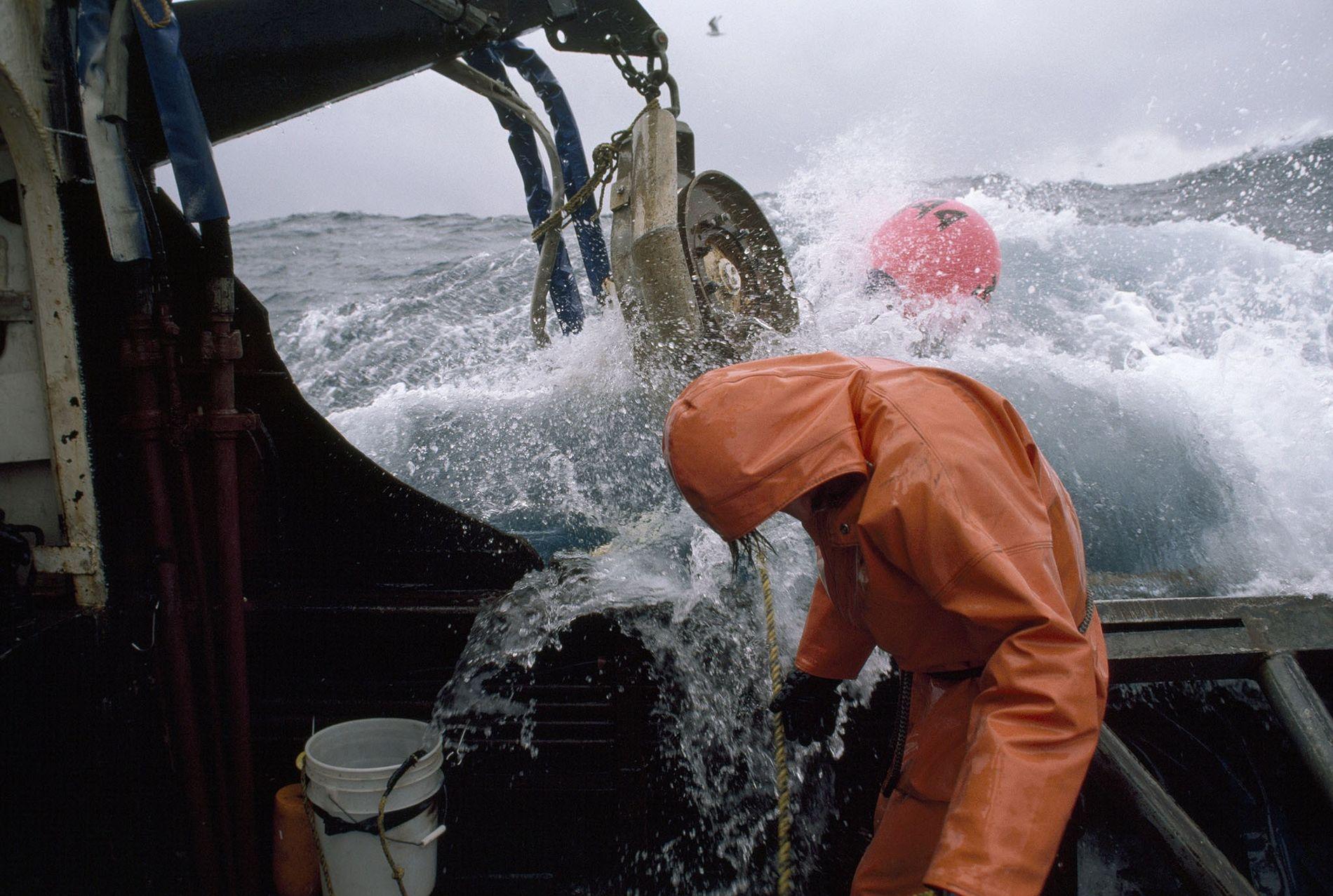 Un pescador comprueba sus sedales