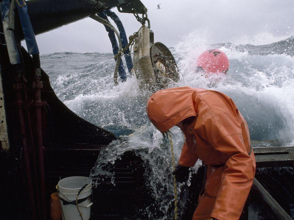 La pesca de altura no es solo destructiva: tampoco es rentable