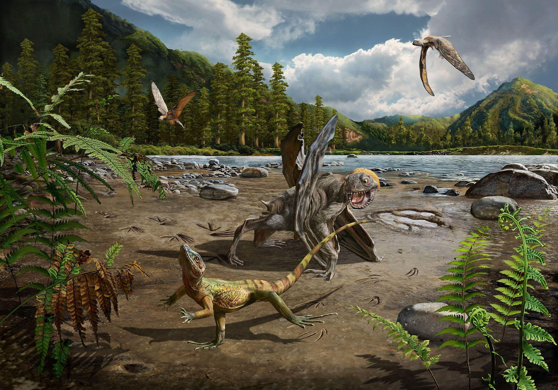 Hace unos 110 millones de años, en el sur de Corea del Sur había exuberantes lagunas habitadas por lagartos y pterosaurios. Algunos de estos lagartos corrían sobre sus patas traseras, dejando huellas que han sido descubiertas recientemente por los científicos.