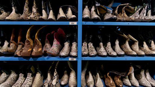 Incautan miles de artículos de cuero exótico a marcas de lujo en Estados Unidos