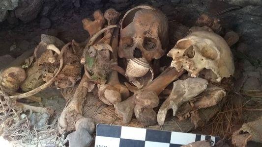 ¿Qué hacía en México este guacamayo momificado de 2.000 años de antigüedad?