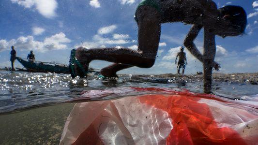 La cantidad de residuos plásticos en el mar podría casi triplicarse para 2040 si no se ...