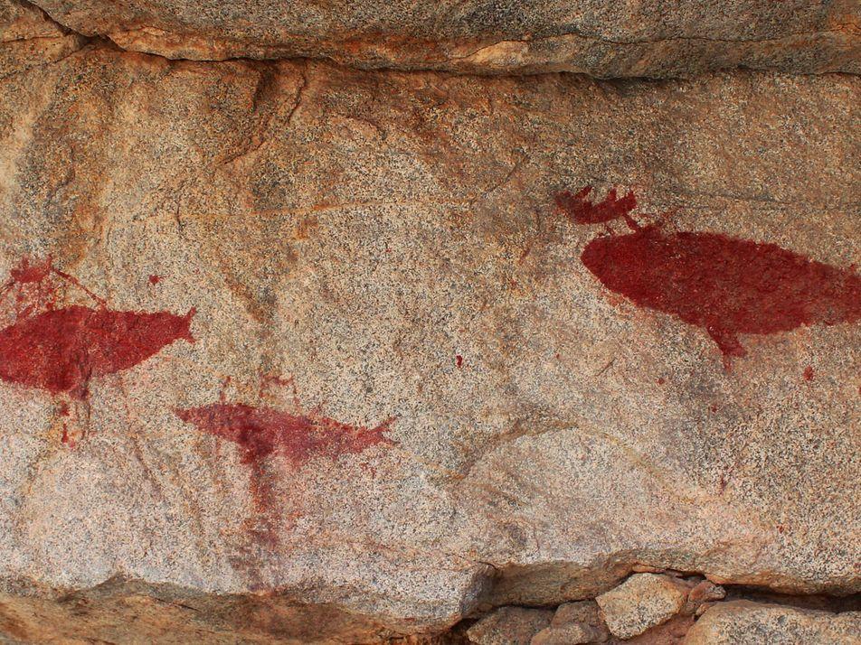 Estas pinturas rupestres representan la caza de ballenas hace 1.500 años