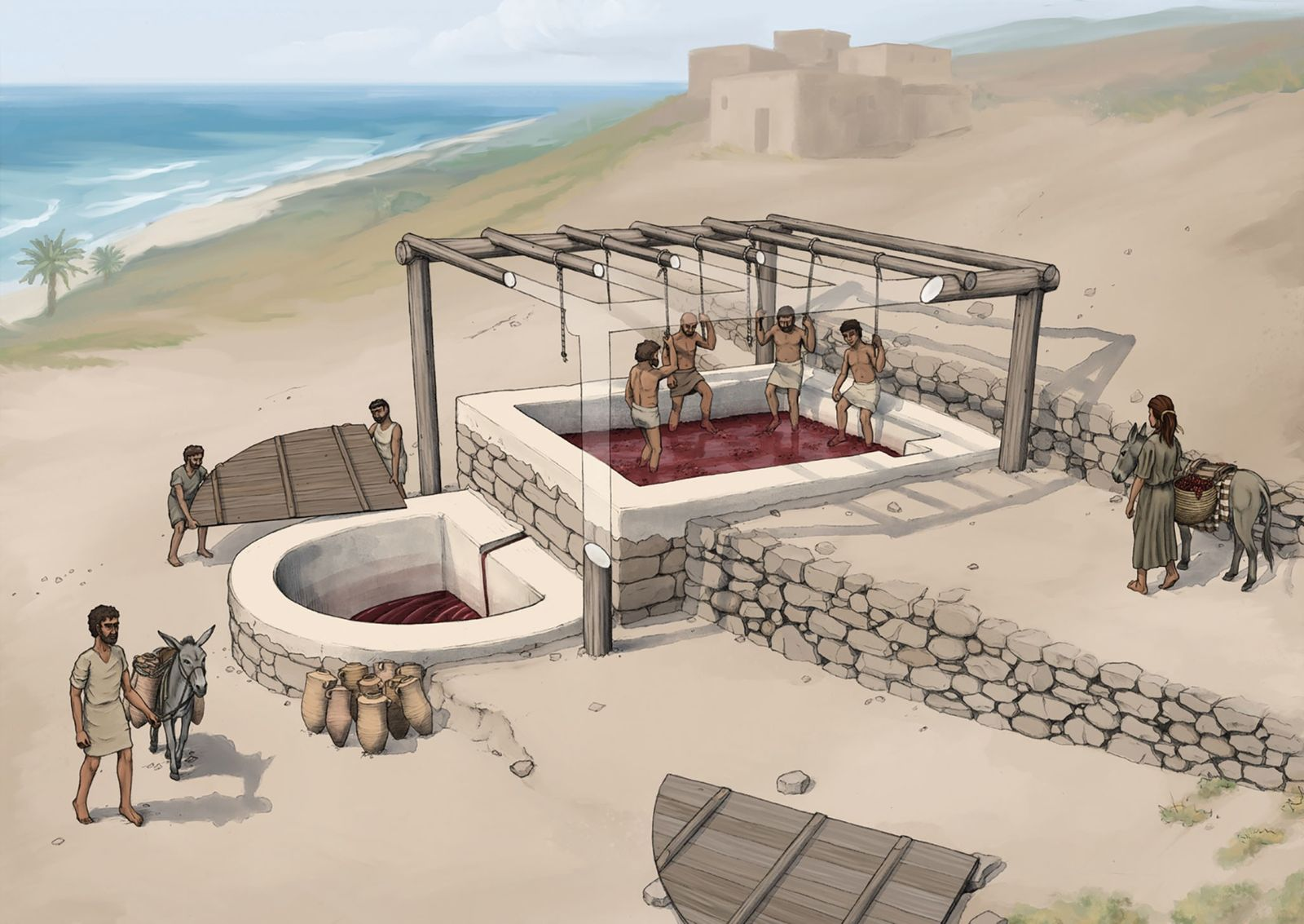 Descubren una prensa de vino de 2600 años de antigüedad en el Líbano