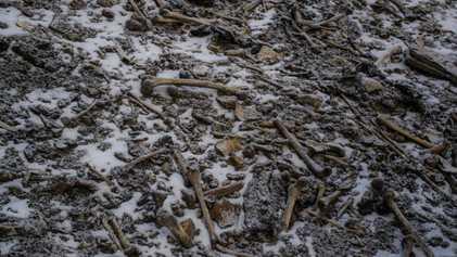 Un estudio genético plantea más incógnitas sobre el misterio de un lago lleno de esqueletos