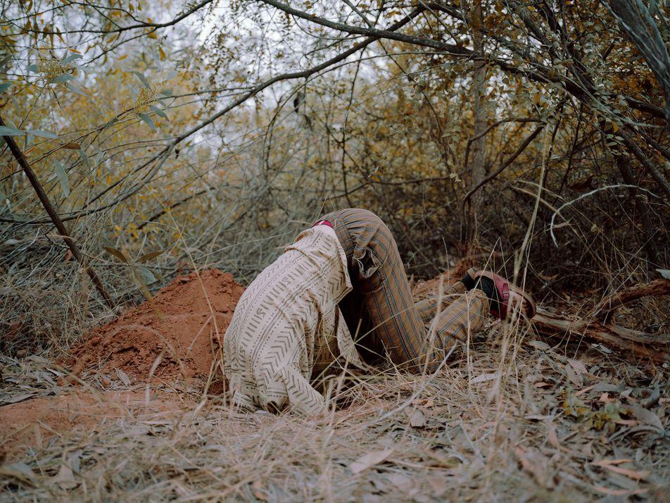 La comunidad del bosque de Sadhana