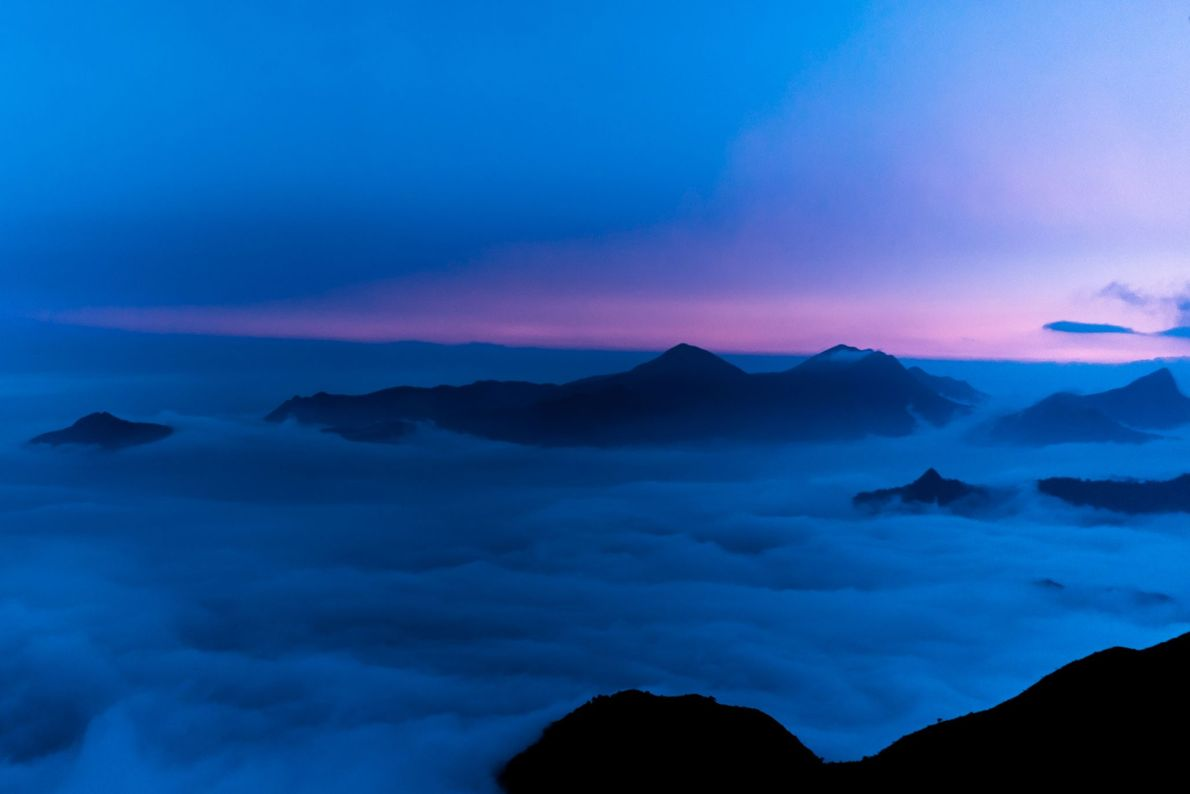 """These mountain tops peeking out of the clouds are known as """"sky islands."""" Similar to oceanic ..."""