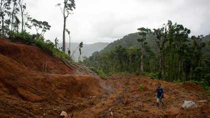 La tala corrompe estas islas, pero una aldea la combate con éxito