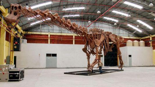 Esta nueva especie de dinosaurio fue el animal más grande sobre la Tierra