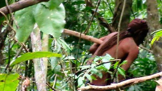 El superviviente solitario y otras tribus aisladas de Brasil