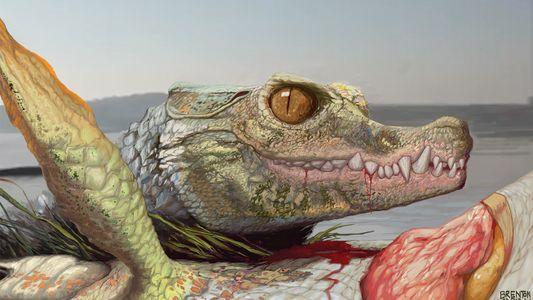 Descubren a las afueras de Texas los fósiles de un extraño pariente de los cocodrilos