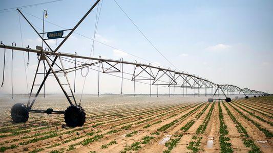 Miles de millones de personas podrían sufrir escasez de agua y alimentos en los próximos 30 ...
