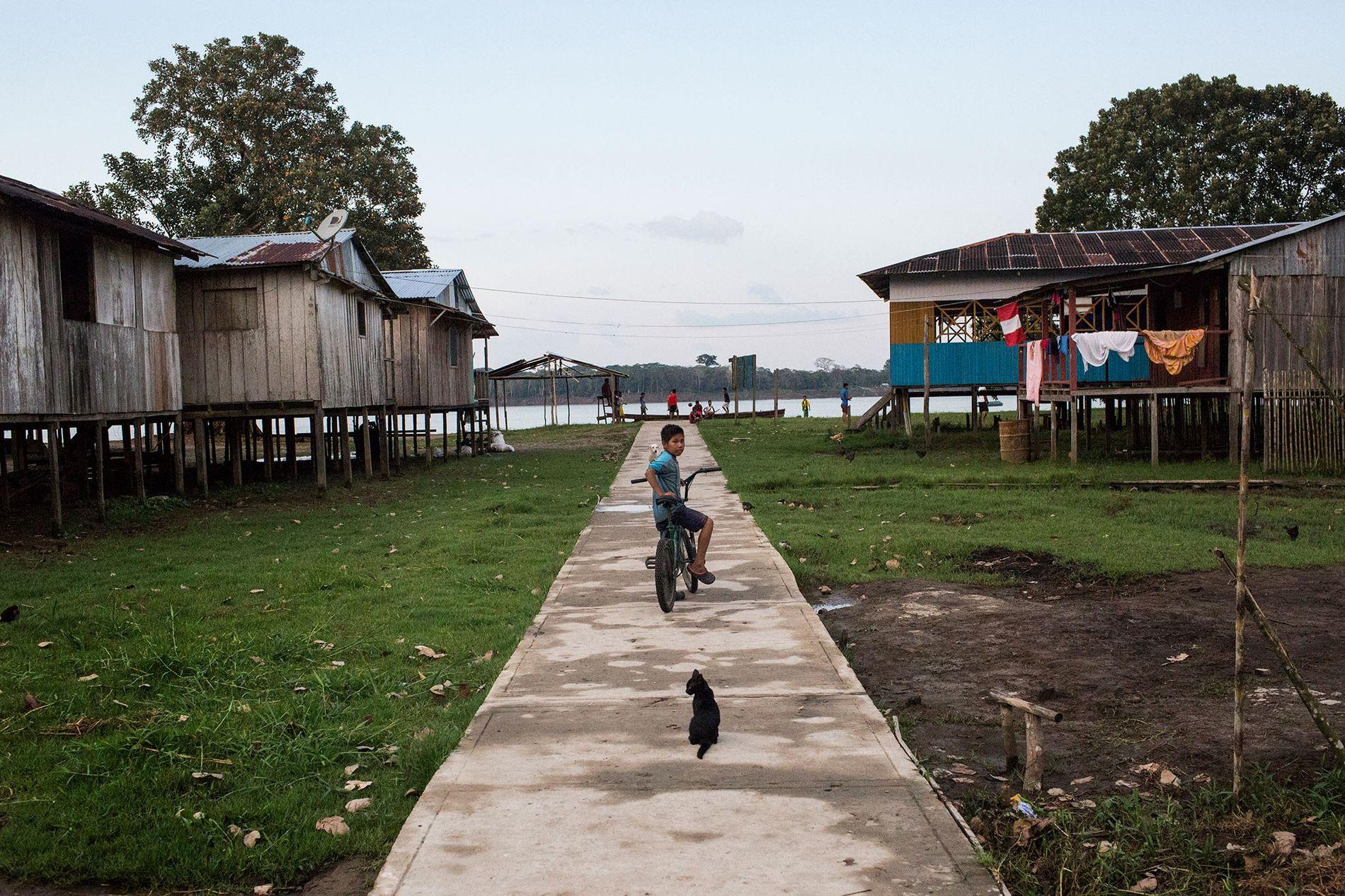 Un niño y un gato se detienen en un camino hacia Puerto Alegría, una pequeña comunidad peruana junto al río Amazonas. La localidad era un destino para interactuar con animales exóticos hasta que la policía intervino en diciembre de 2018. Ahora, muchos miembros de la comunidad están decididos a labrar un nuevo futuro.