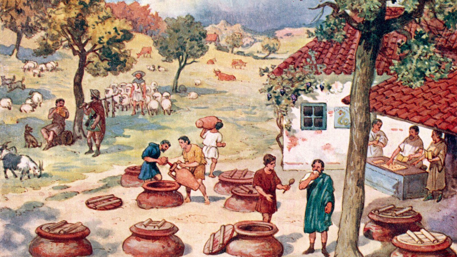 Vinateros europeos