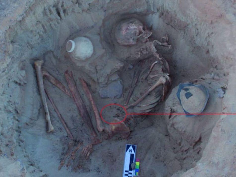 Esta mujer del antiguo Egipto podría haber muerto durante el parto