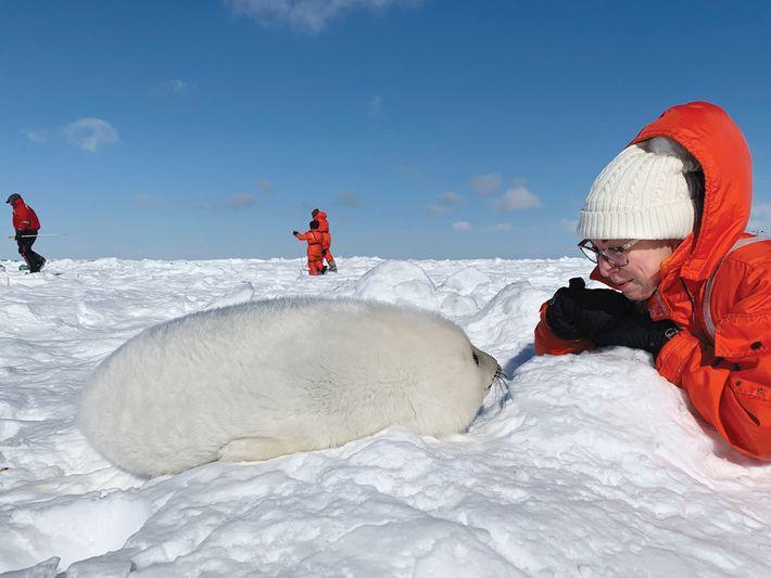 Mujer y foca de Groenlandia