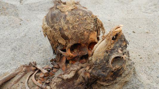 Exclusiva: Este podría ser el mayor sacrificio infantil masivo antiguo del mundo