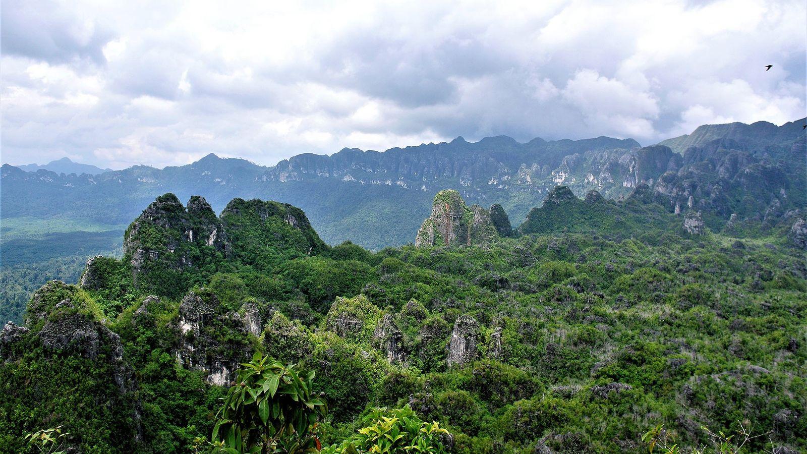 Kalimantan Oriental
