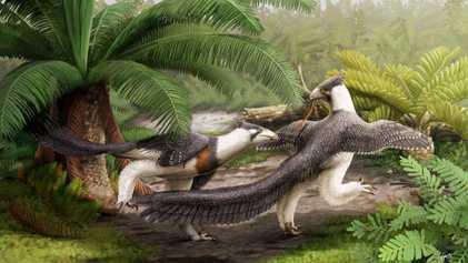 Lori: el dinosaurio que podría aportar información sobre la evolución del vuelo en las aves