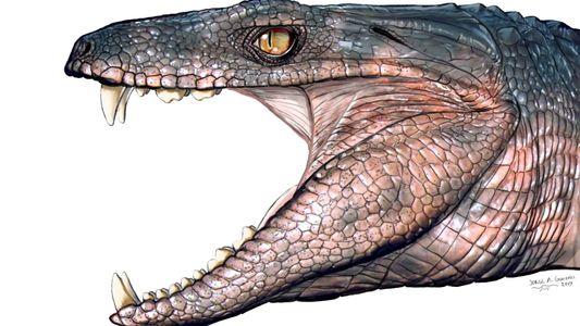 Los cocodrilos herbívoros abundaban en los tiempos de los dinosaurios