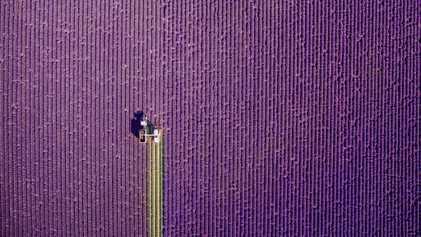 Estas son las fotografías premiadas en la cuarta edición de Dronestagram