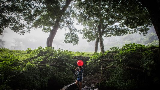 El Salvador, antaño exuberante, se seca a un ritmo alarmante