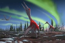 Pterosaurio Cryodrakon boreas