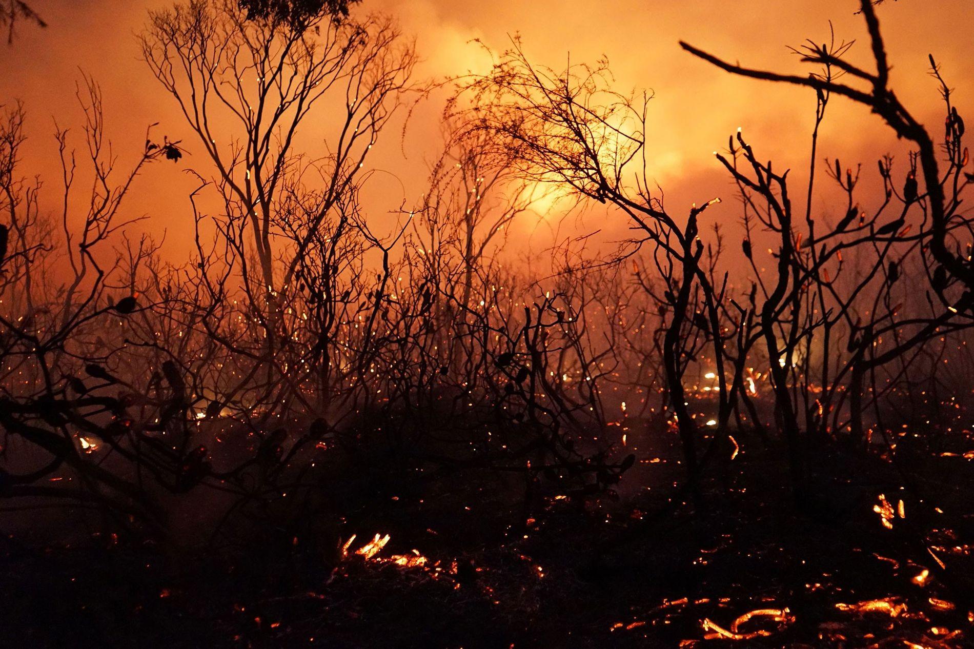Incendio en Deepwater