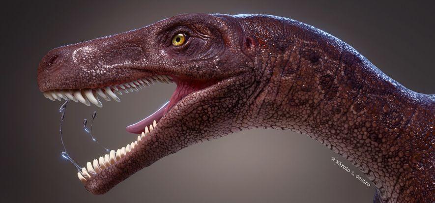 Este fósil pertenece a uno de los dinosaurios carnívoros más antiguos documentados