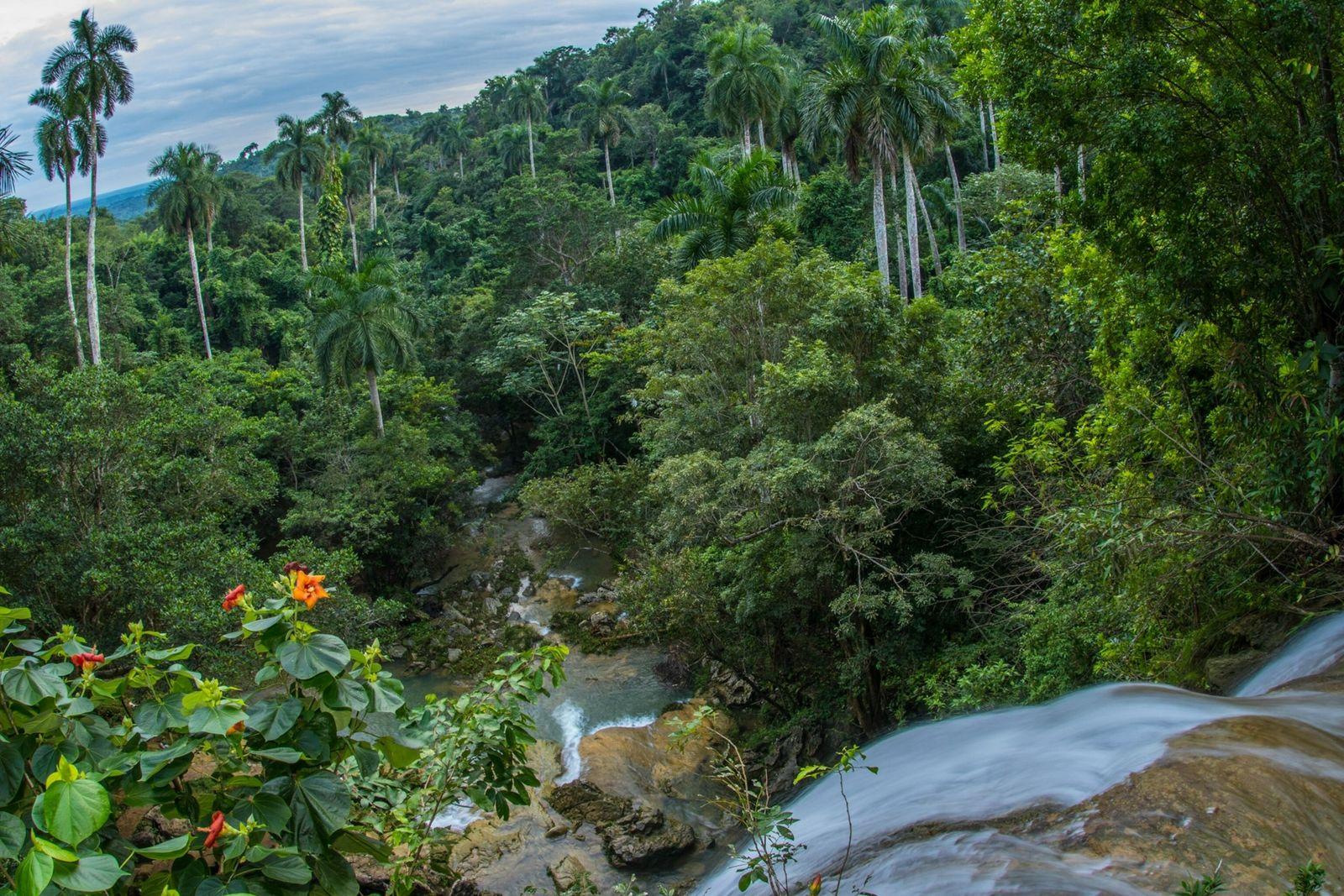 Los beneficios ambientales inesperados del aislamiento de Cuba