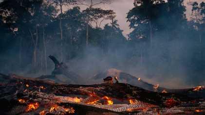 Así podría afectar la pérdida de la selva amazónica al agua y al clima