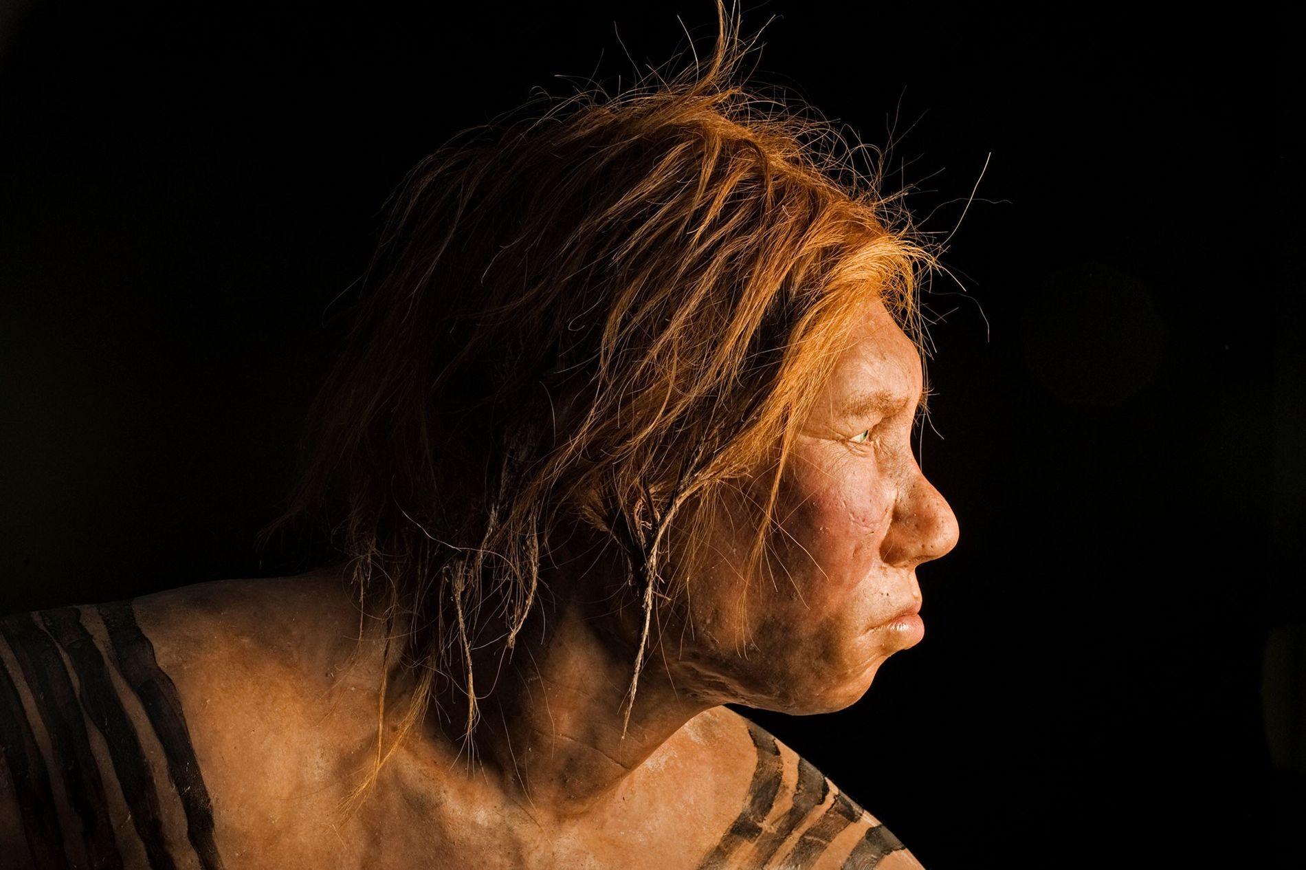 Mujer neandertal