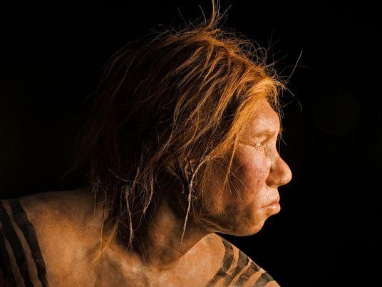 El hombre de Neandertal, otro paso más cerca de nuestra especie