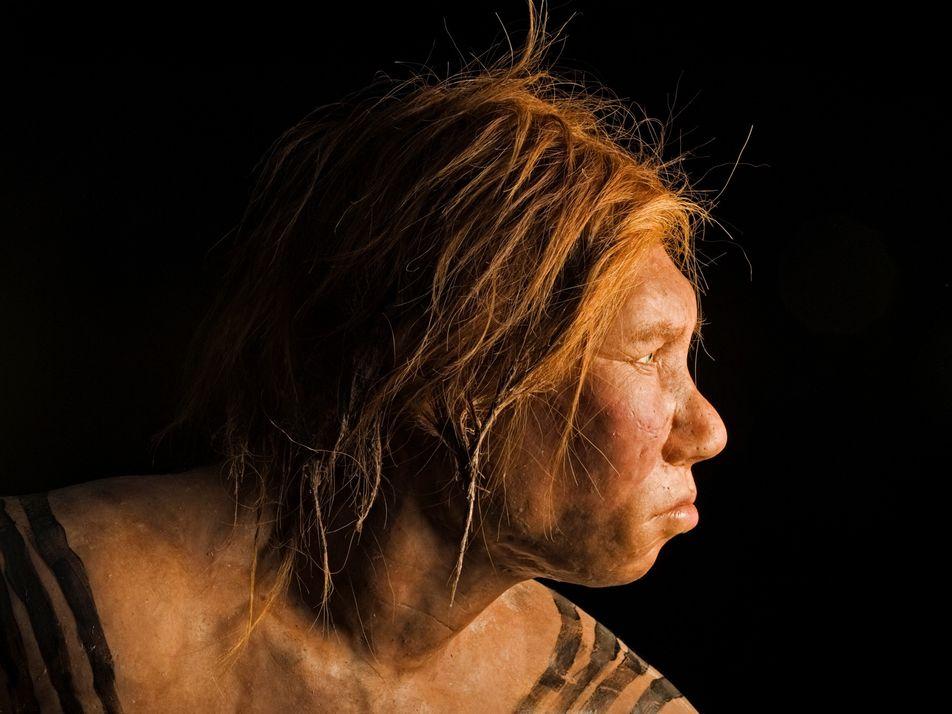 Las poblaciones africanas actuales también tienen ascendencia neandertal