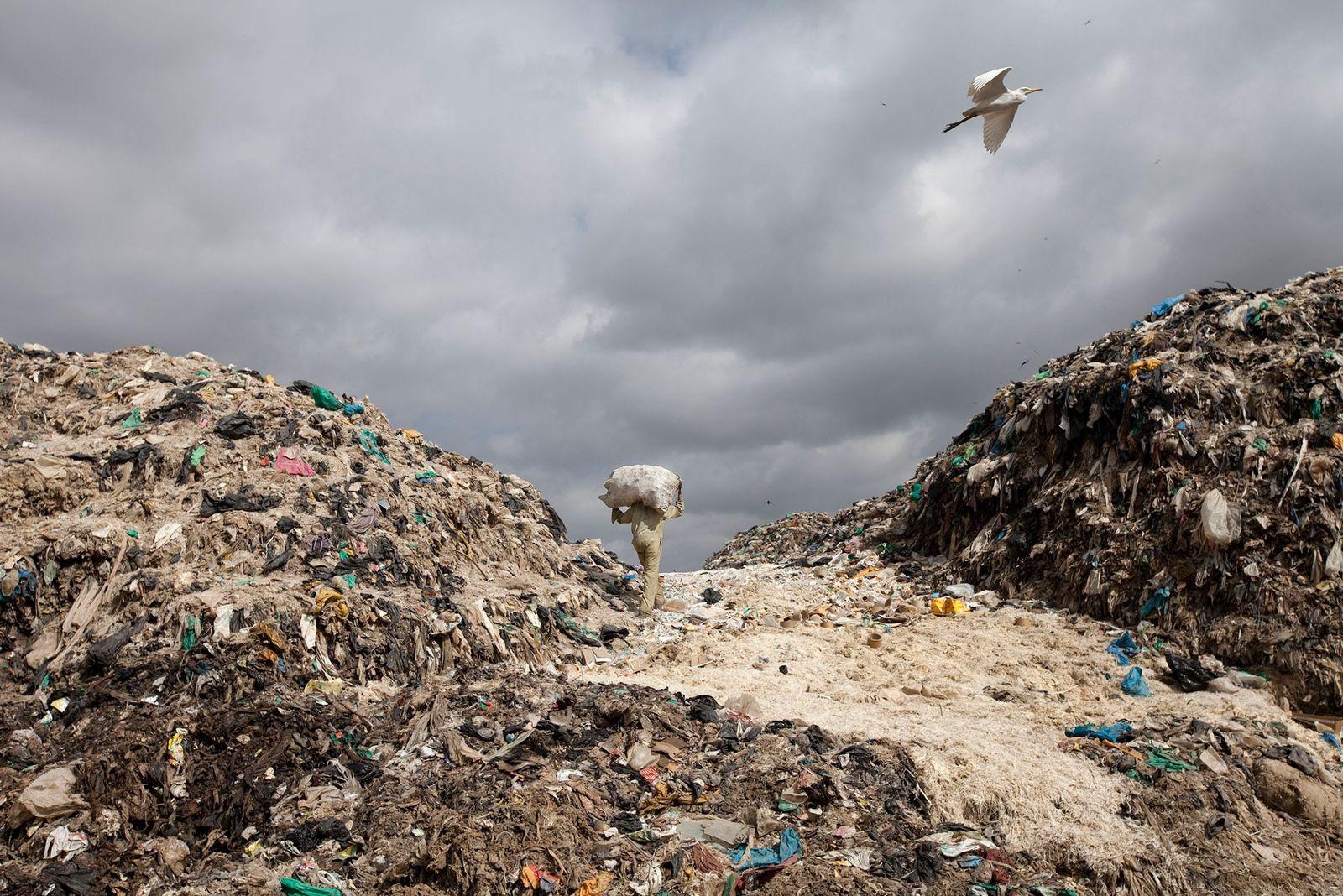 Aumentan las prohibiciones de bolsas de plástico, pero ¿son eficaces?