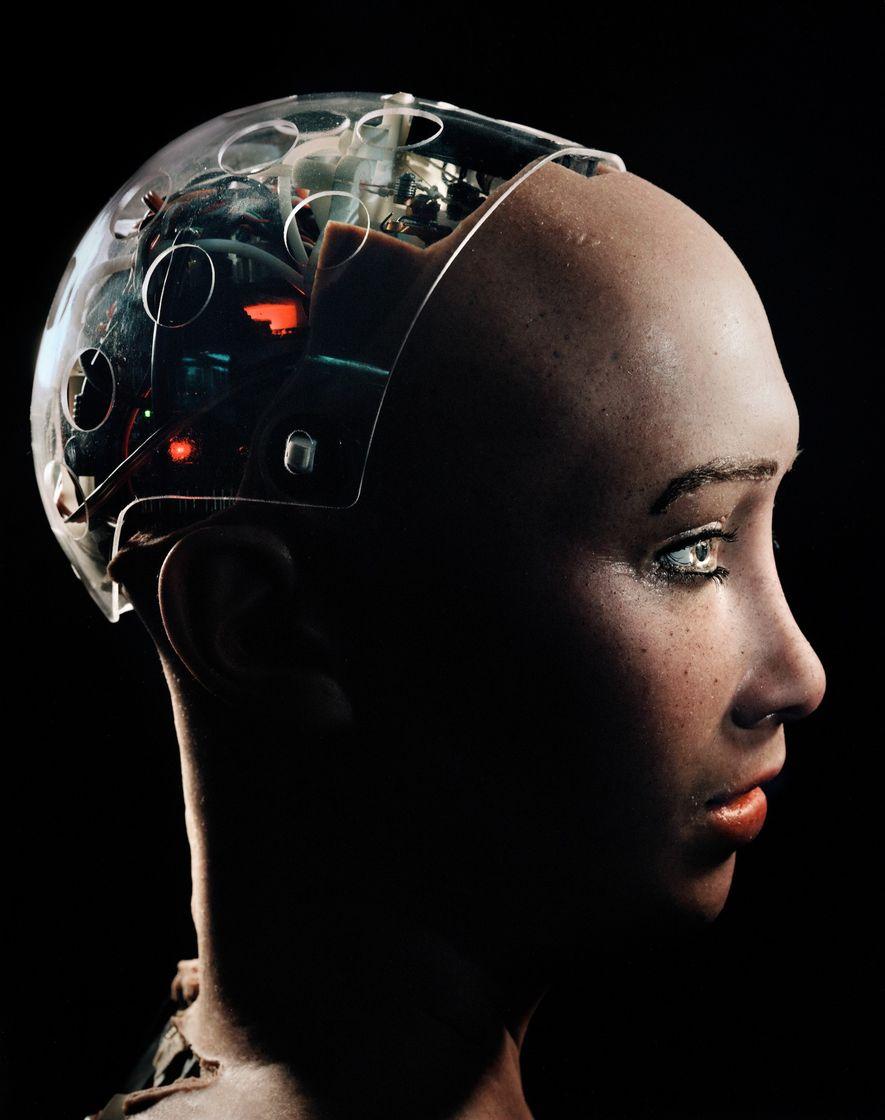 Un cráneo transparente permite que la gente pueda ver literalmente el interior de la cabeza de ...