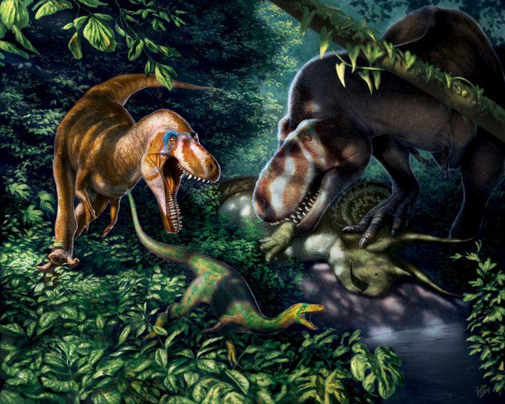 Tyrannosaurus rex joven
