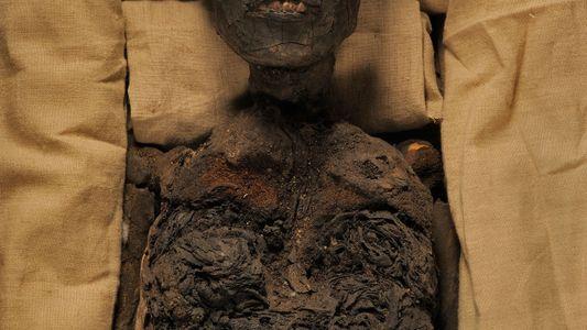 Álbum de fotos: El complicado árbol genealógico de Tutankamón y Nefertiti