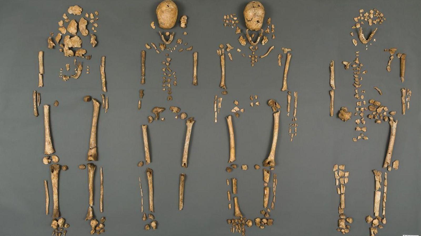 Esqueletos de Jamestown